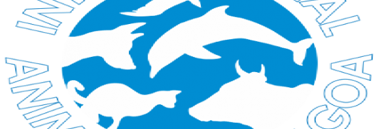 IAR-GOA-Logo_600x400